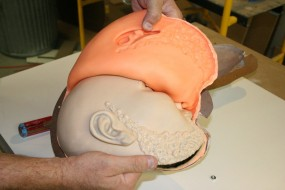 Unveiling a Newly Cast Urethane Head